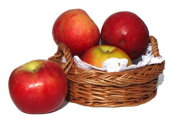 Günde bir elma ile ince bir fizik