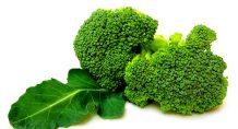 Brokoli kanseri önlüyor