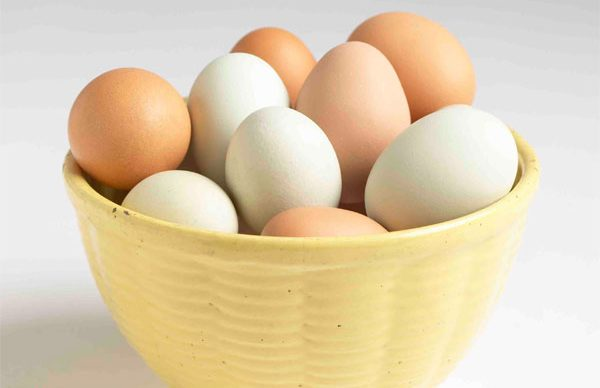 Her gün en az 2 yumurta